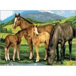 Malování podle čísel - Koně